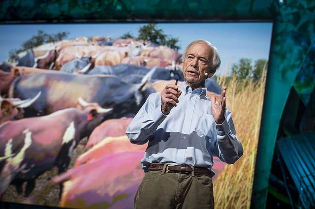 Cómo reverdecer los desiertos del mundo y revertir el cambio climático