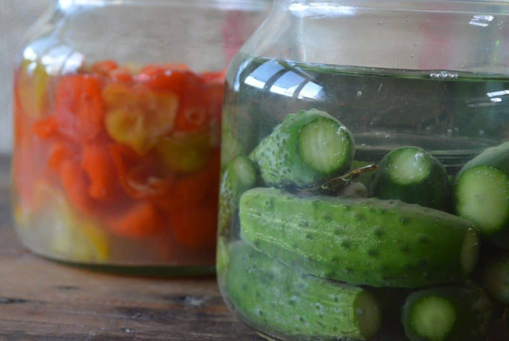 La fermentación se reinventa como tendencia culinaria para rescatar sabores ancestrales