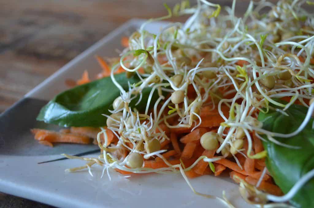 Deficiencias comunes en dietas vegetarianas