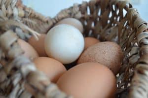 huevos-de-campo-en-canasta