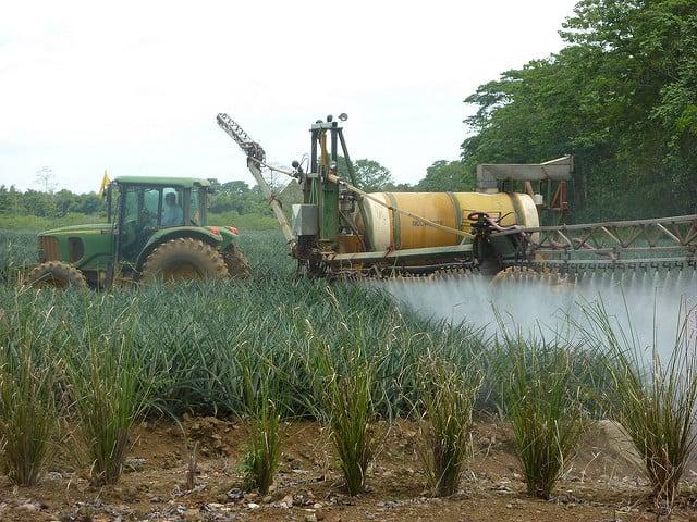 9 enfermedades vinculadas a los pesticidas