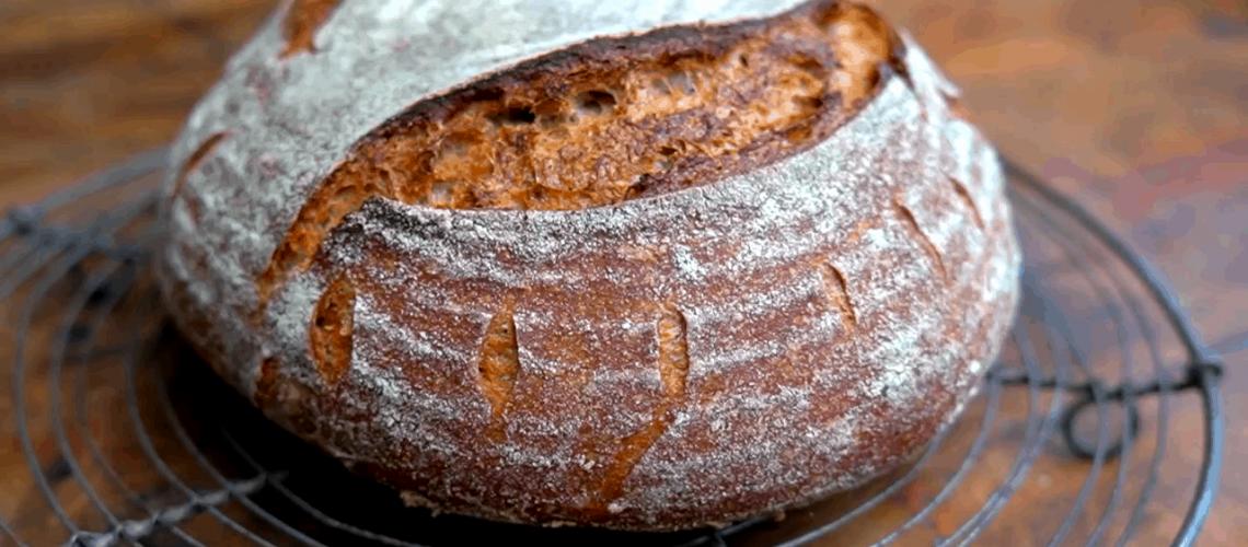 Pan del video de trigo