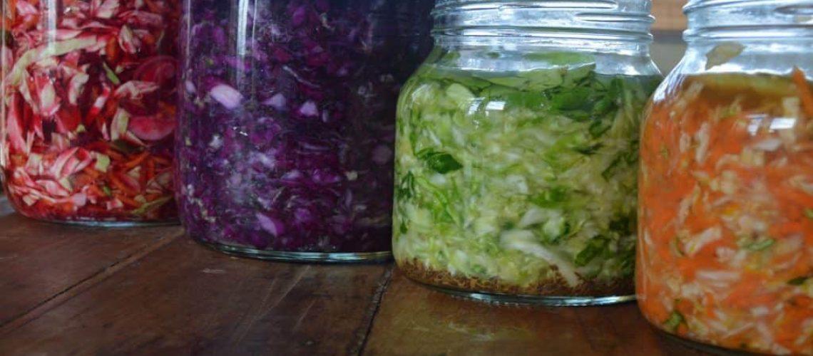 vegetales-fermentados-en-4-colores